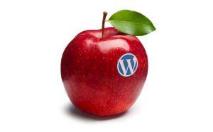 Come installare un template WordPress